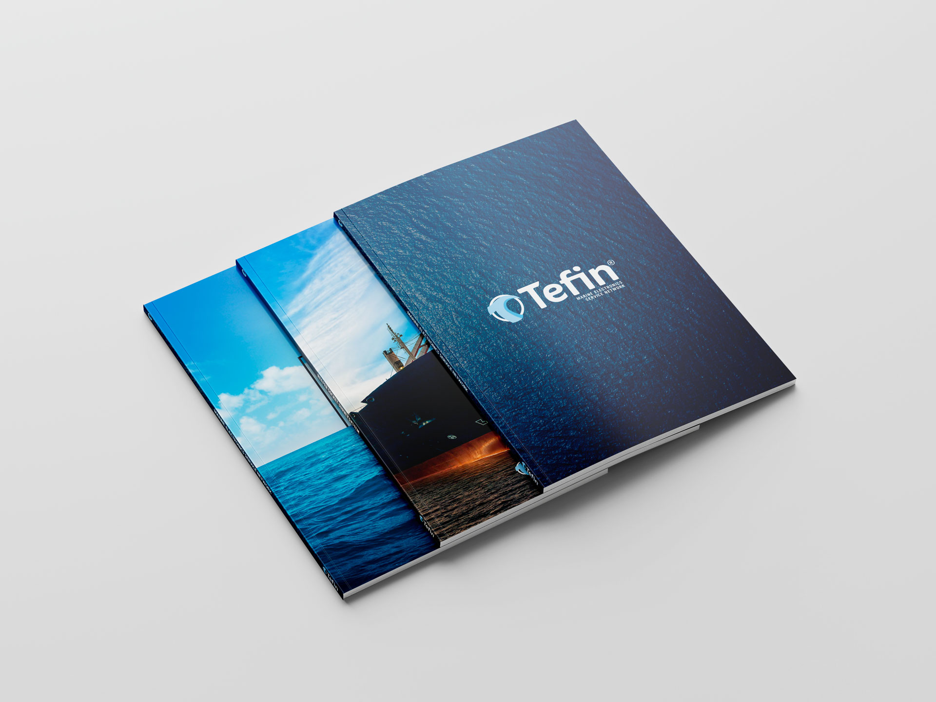 Corporate identity Company profile Tefin